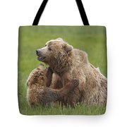 Grizzly Bear Playing With Cub Lake Tote Bag