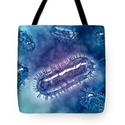 Group Of Escherichia Coli Bacteria Tote Bag