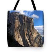 Guardian Of The Valley Tote Bag