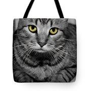 Handsome Tote Bag