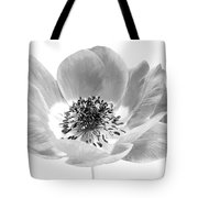 Harmony Scarlet Anemone Tote Bag