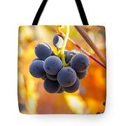 Harvest Gratitude Tote Bag