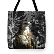 Hawk Of Prey Tote Bag