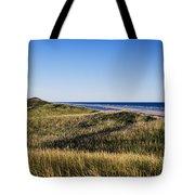 Head Of The Meadow Beach Tote Bag