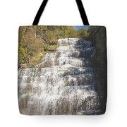 Hector Falls Tote Bag