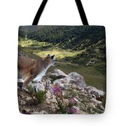 High And Wild Tote Bag