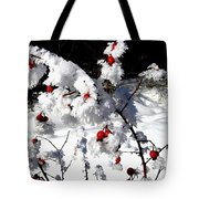 Highland Frost Tote Bag