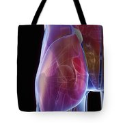 Hip Joint Tote Bag