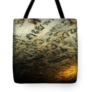 Historic Graphitti  Tote Bag