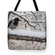 Hooded Crow First Snow Tote Bag