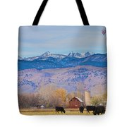 Hot Air Balloon Rocky Mountain County View Tote Bag