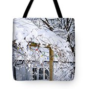 House Under Snow Tote Bag by Elena Elisseeva