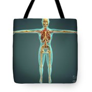Human Body Showing Skeletal System Tote Bag