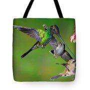 Hummingbirds At Feeder Tote Bag