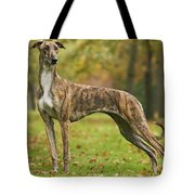 Hungarian Greyhound Tote Bag