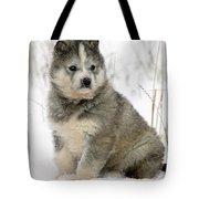 Husky Dog Puppy Tote Bag