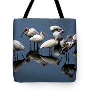 Ibis 10 Tote Bag