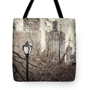 In The Shadow Of The Upper East Side  Tote Bag