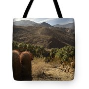 Indian Canyons Tote Bag