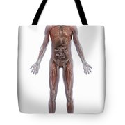Internal Human Anatomy Tote Bag