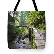 Ithaca Gorge Tote Bag