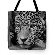 Jaguar In Black And White II Tote Bag by Sandy Keeton