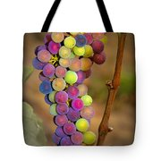 Jewel Tones Tote Bag by Jean Noren