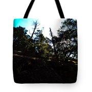 John Muir Trail Tote Bag