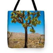 Joshua Tree 28 Tote Bag