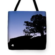 Juniper Tree At Dawn Tote Bag