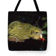 Kakapo Feeding On Supplejack Berries Tote Bag