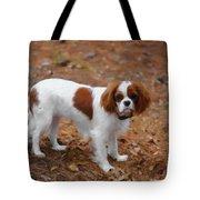 My Sweet Daisy Tote Bag