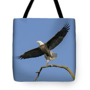King Of The Sky 3 Tote Bag
