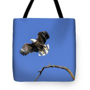 King Of The Sky 4 Tote Bag