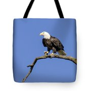 King Of The Sky Tote Bag