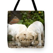 Labrador Puppies Eating Tote Bag