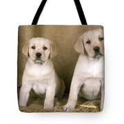 Labrador Retriever Puppies Tote Bag