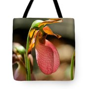 Lady Slippers At Moore State Park 2 Tote Bag