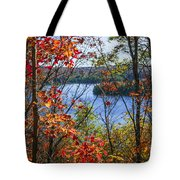 Lake And Fall Forest Tote Bag