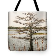Lake Mattamuskeet Nature Trees And Lants In Spring Time  Tote Bag