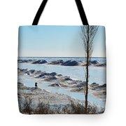 Lake Michigan Ice Tote Bag