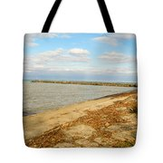 Lake Ontario Shoreline Tote Bag