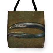 Lamprey Eel, Illustration Tote Bag