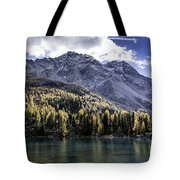 Larch Pine Reflections Tote Bag
