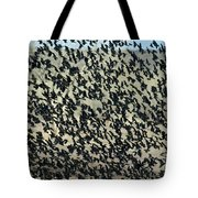 Large Flock Of Blackbirds And Cowbirds Tote Bag