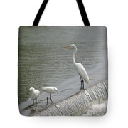Learning To Fish Tote Bag