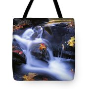 Leaves In Little River Great Smoky Tote Bag