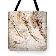 Leonardo: Anatomy, 1510 Tote Bag