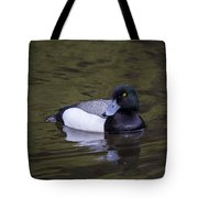 Lesser Scaup Tote Bag