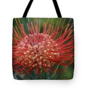 Leucospermum - Pincushion Protea - Tropical Sunburst Protea Flower Hawaii Tote Bag